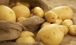 Patatesin Bu Faydalarını Biliyor muydunuz?
