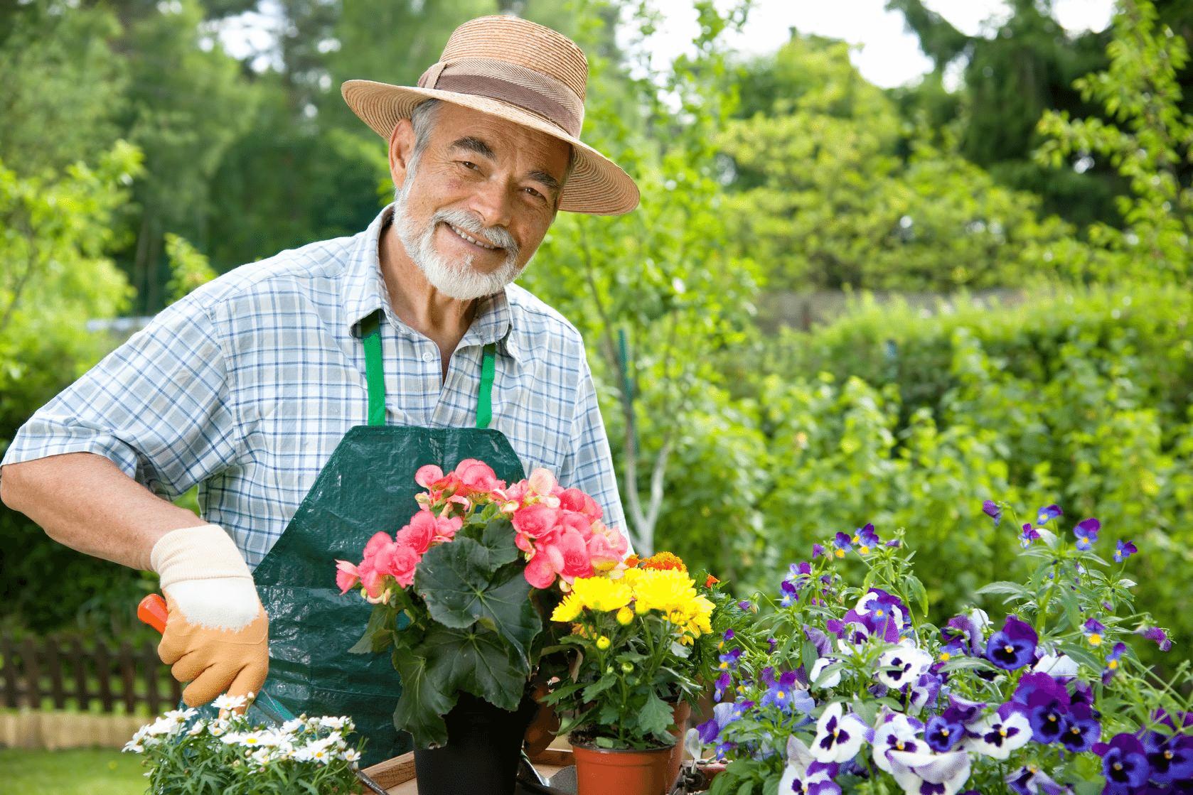Çiçeklerde Saksı Değişimi Nasıl Yapılır?