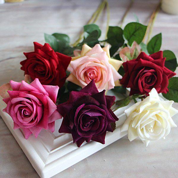 Sarmaşık Güllerin Bakımı