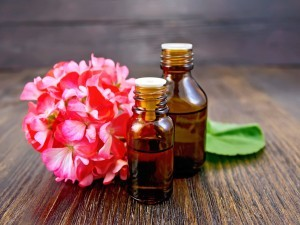 Two bottle of oil with green leaf and flower of pink geranium on a wooden boards background