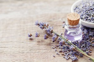 Lavender-Essential-Oil-Headache-Relief-AAHC-Photo