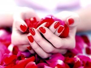 z-wallpaper-hands-and-rose-petals