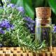Biberiye Bitkisinin Sağlığa Yararları