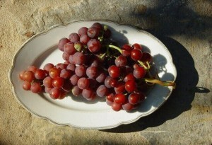 grape-fruits-increase-sex-endurance-640x437