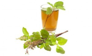 honey-and-basil-leaf