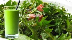 dandelion-juice-salad