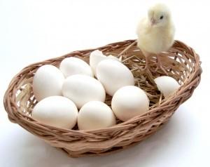 yumurta-kabugunu-soymanin-puf-noktasi-38187