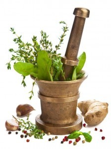 maternal_herbal_medications