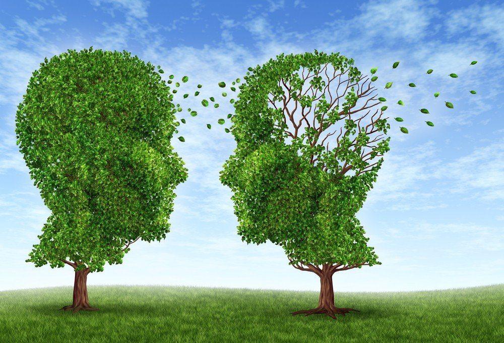 Zihinsel Enerjiyi Arttıran Otlar 11