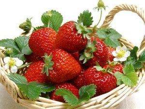 Uzun Yaşamaya Yardımcı Olacak Besinler 8