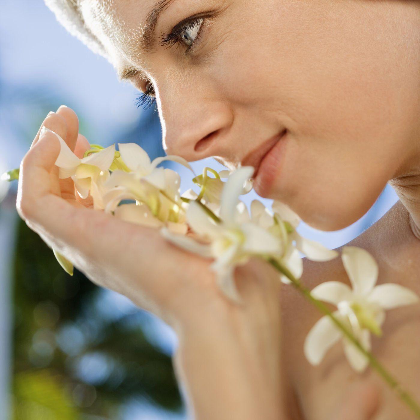 Aromatik Kokuların Zihin ve Duygusal Bağlantısı