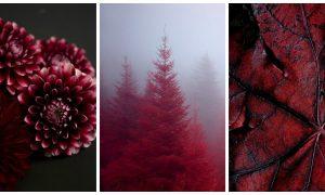 Renk Psikolojisi ve Renklerin Duygusal Etkileri