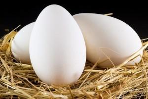 Kadınlarda Hormonları Dengeleyen 7 Besin 2