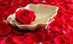 Parfümlerde En Çok Kullanılan Çiçekler